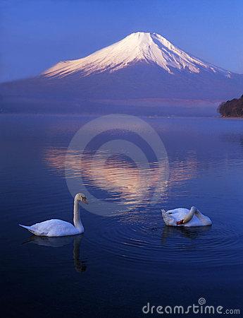Free Mt Fuji-403 Royalty Free Stock Photo - 4612975