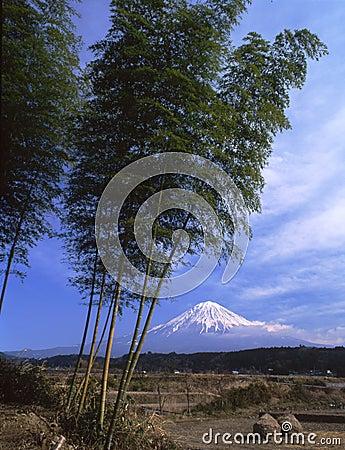 Free Mt Fuji Stock Image - 4587591