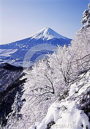 Free Mt Fuji Royalty Free Stock Photography - 4587677