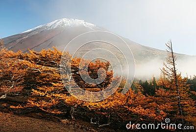 Mt fuji-dg 62