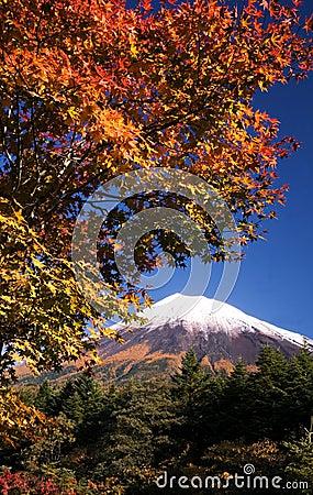 Mt fuji dg-67