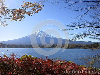 Mt. Fuji Viewed Between Fall Leaves and Tree Branches
