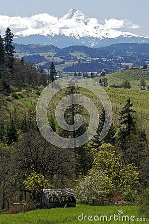 Mt Hood and Oregon Scenery
