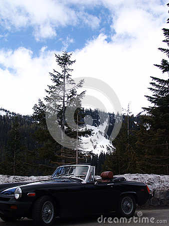 Mt. Rainer Washington
