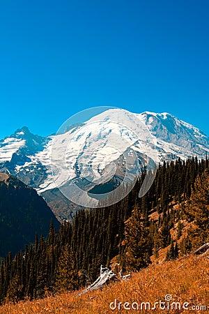 Free Mt. Rainier Royalty Free Stock Image - 1226626