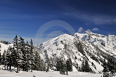 Mt. shuksan with snow in winter