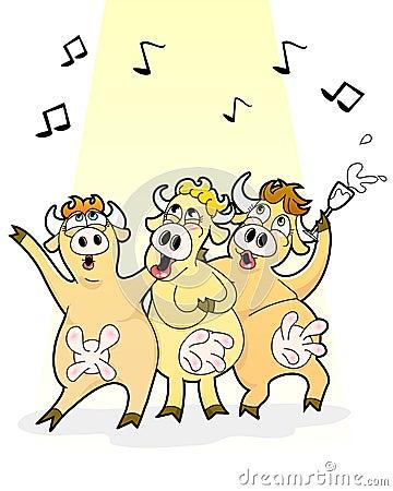 Mucche di canto