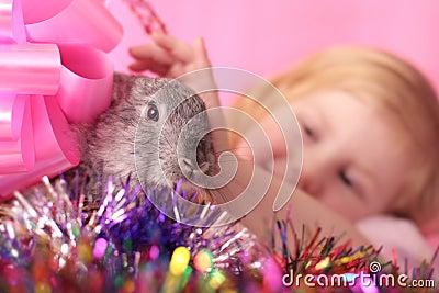 Muchacha con el conejo
