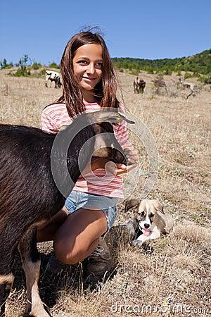 Muchacha del shepard del ganado