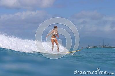 Muchacha Hawaii de la persona que practica surf
