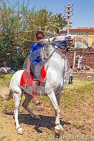 Muchacho árabe en el caballo blanco Imagen editorial