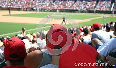 Muchedumbre del béisbol