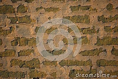 Mud brick