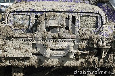 Mud on Car Grill