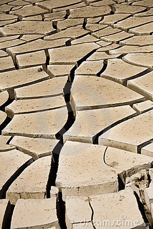 Mud Cracks