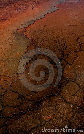 Free Mud Flat Patterns Royalty Free Stock Photo - 243175