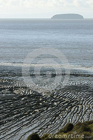 Mud ripples & Steep Holm
