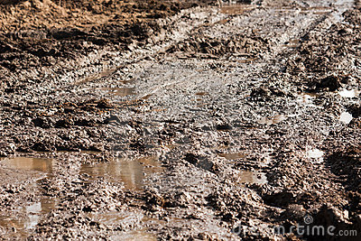 Mud road track