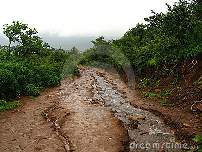 Muddy stream and dirt road