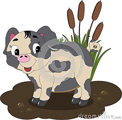 Mudhole Pig