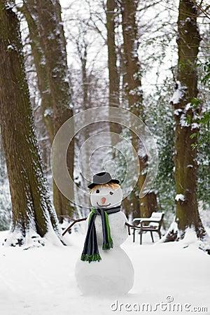 Muñeco de nieve de congelación