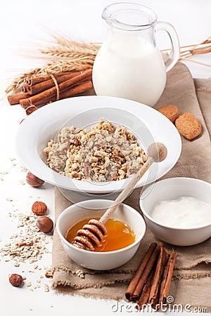 Free Muesli With Milk And Honey Stock Images - 35509484