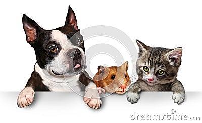 Muestra de los animales domésticos