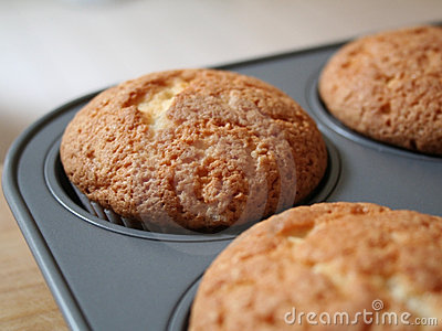 Muffin cupcakes in pan