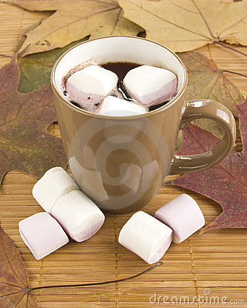 Mug of hot chocolate with marshmallows against