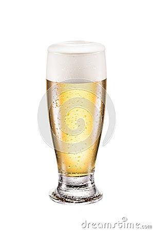 Free Mug Of Cold Beer Stock Image - 103496081