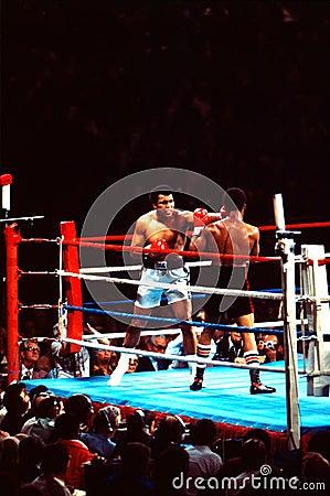 Free Muhammad Ali V. Leon Spinks Royalty Free Stock Photos - 21169288