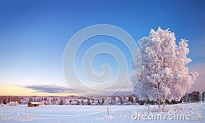 Muhos winter