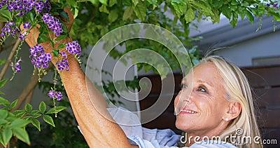 Mujer discapacitada que despluma las flores de la planta en el pórtico 4k metrajes