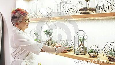 Mujer florista moderna de alto nivel cuida las plantas en cápsulas almacen de video