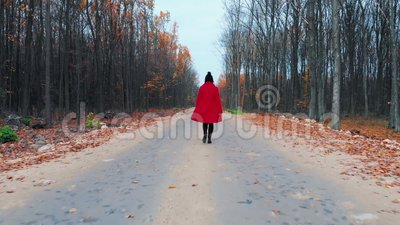 Mujer joven en capa roja que camina solamente a lo largo del camino vacío en la opinión trasera del bosque del otoño Viaje, liber almacen de video