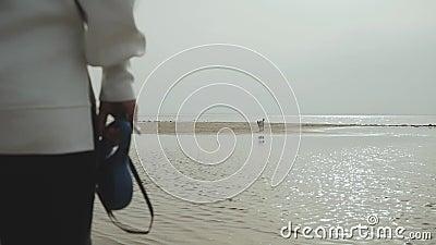 Mujer joven feliz que camina con su perro mixbreed en la playa, visión trasera almacen de metraje de vídeo