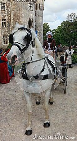 Mujer medieval en un carro Imagen de archivo editorial