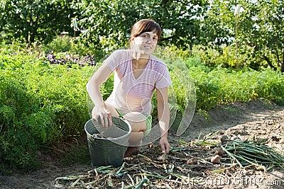 A mulher é cebola da colheita
