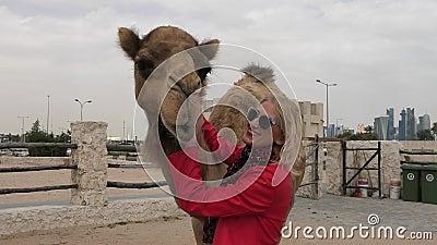 A mulher abraça o camelo filme