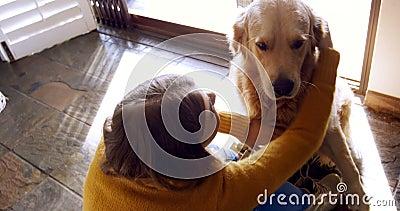 Mulher bonita que ama seu cão 4k vídeos de arquivo