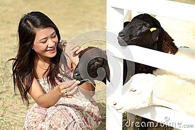 Mulher com cordeiro em um campo