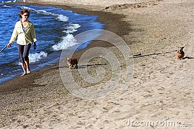 Mulher na praia com cães