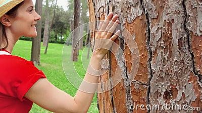 Mulher que desliza a mão ao longo da árvore velha no movimento lento Superfície tocante da crosta da mão fêmea do tronco de árvor video estoque