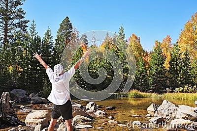 Multi-colored autumn woods