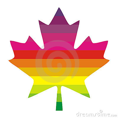 Multi colored maple leaf