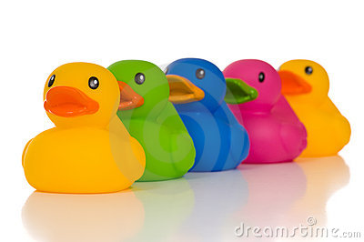 Multicolor Ducks