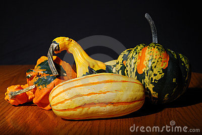 Multicolored fancy winter squash