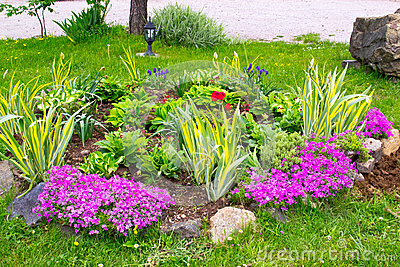 Multicolored flowerbed on a lawn. horizontal shot