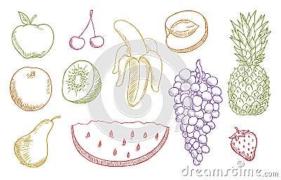 Multicolored fruits set