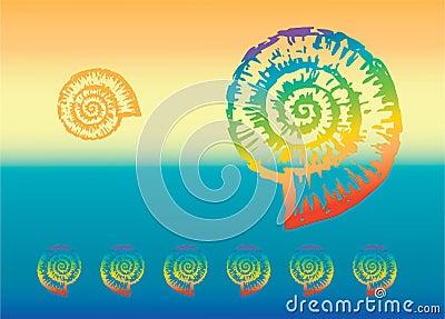 Multicolored nautilus